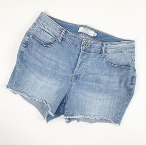 Torrid Raw Hemline High-Waisted Denim Shorts 12